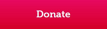 FTH Donate Button
