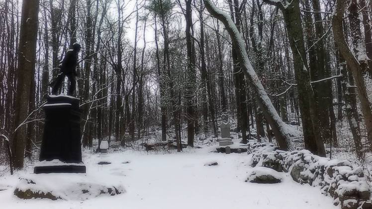 snowcannon9